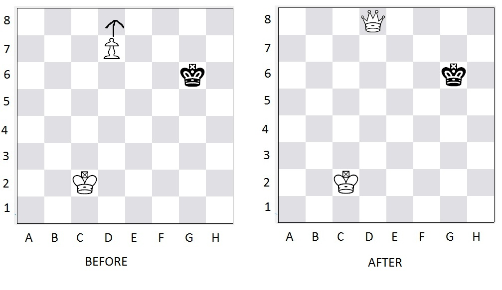 Special Moves in Chess for Pawns | Regency Chess