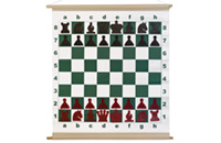 Chess Demonstration Boards