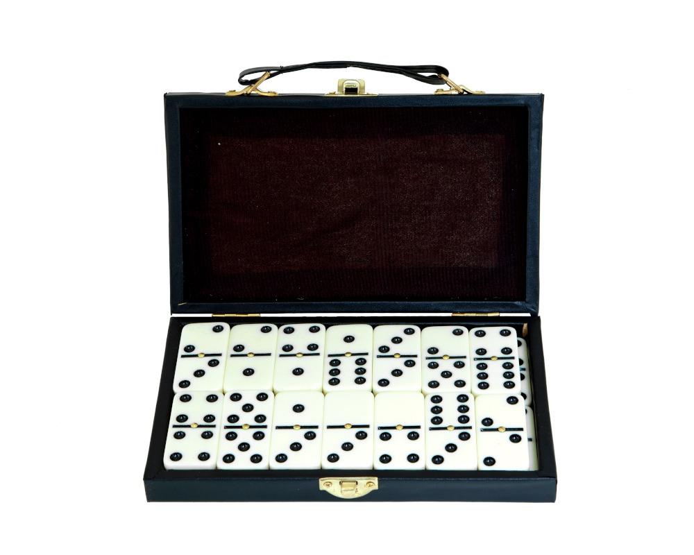 Double 6 Domino Set