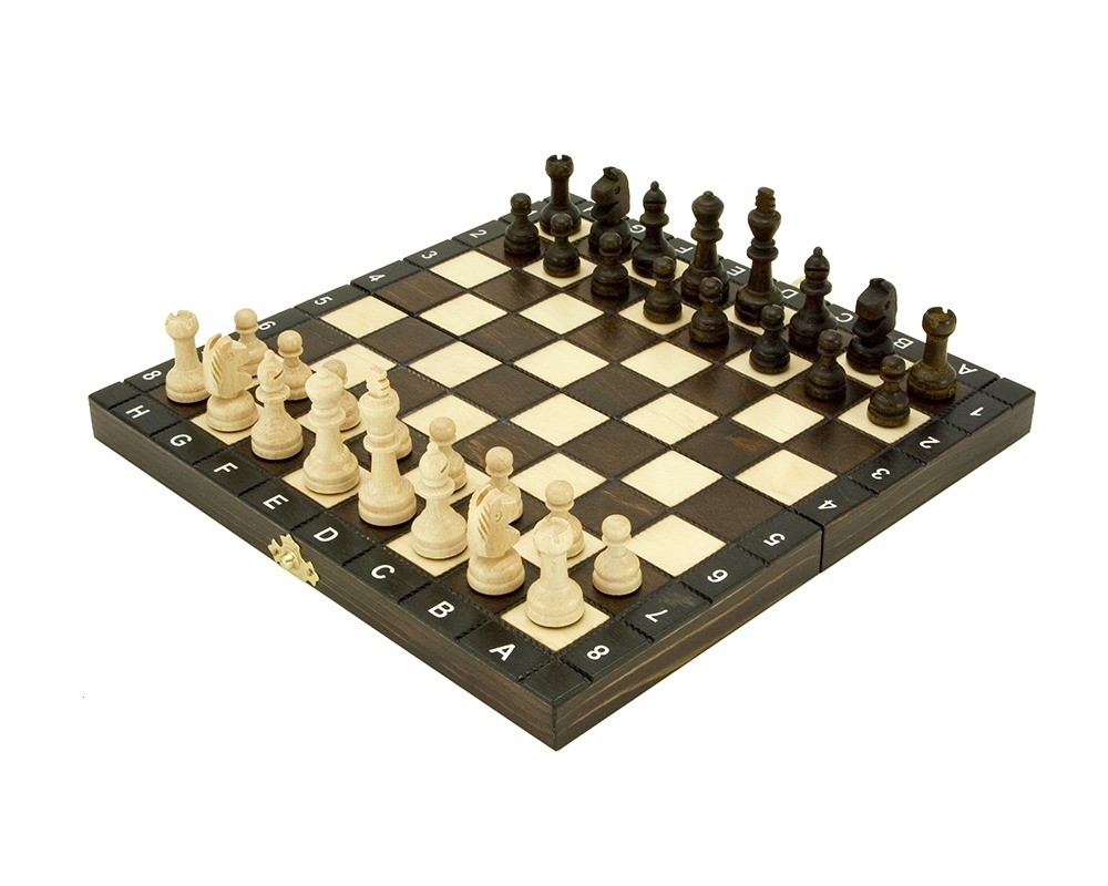10.5 Inch European School Folding Chess Set